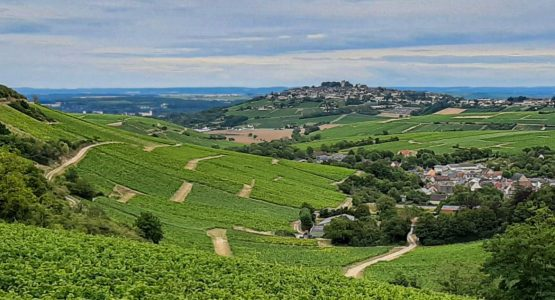 Loire Valley by Bike: Nevers to Orléans