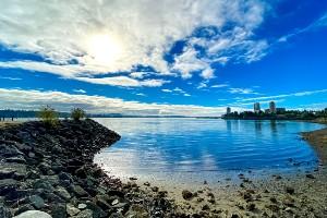 Vancouver Island Wildlife Self-Drive Tour