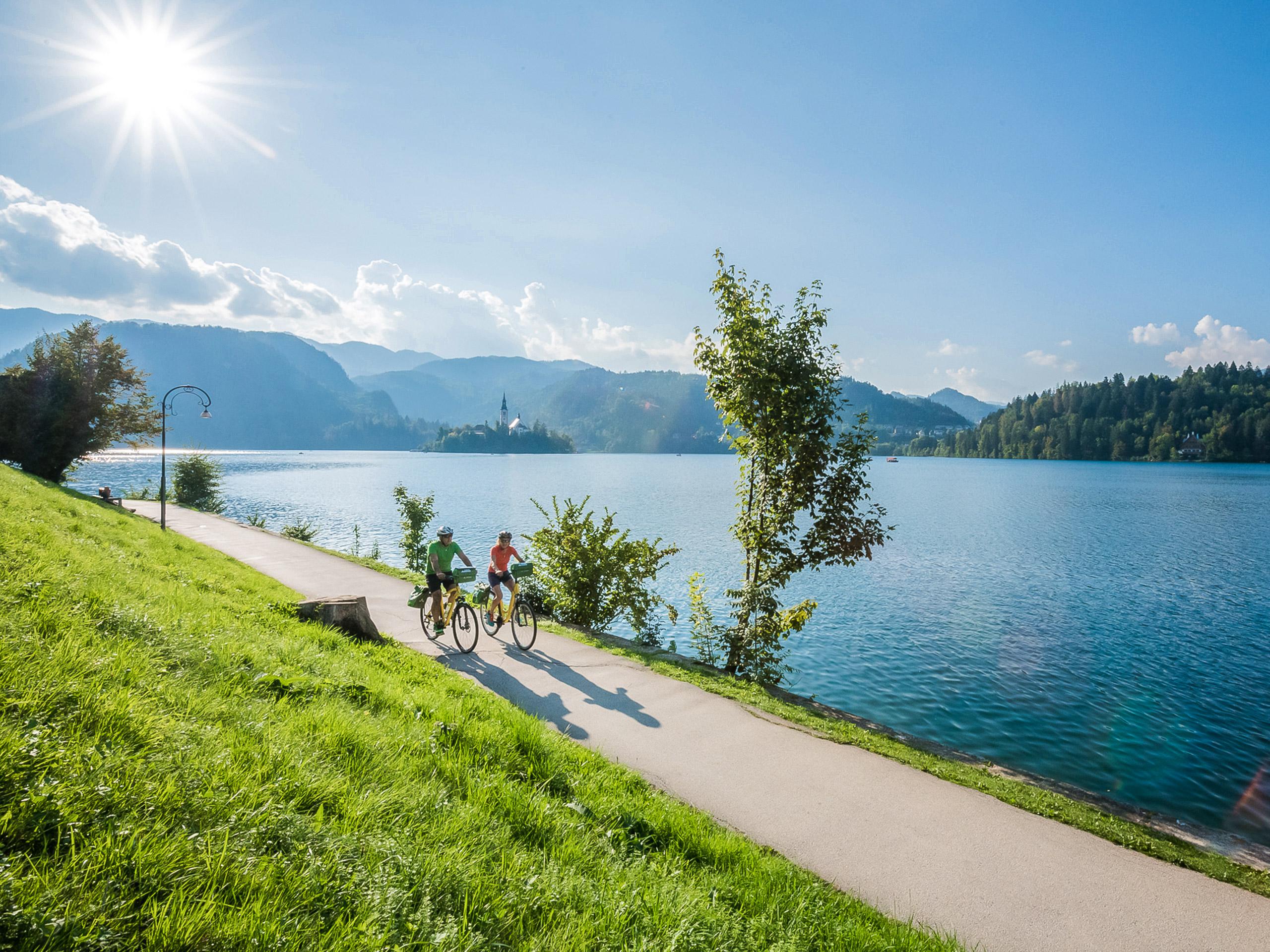 Bank of Lake Bled
