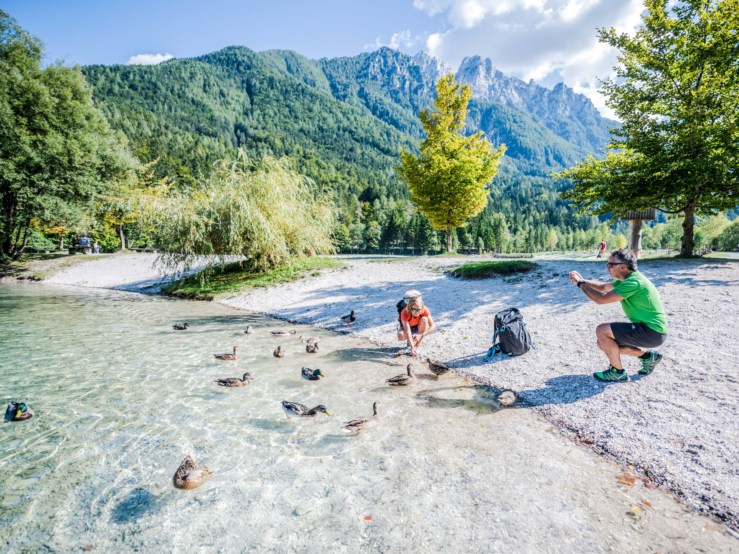Tourists feed ducks by the river