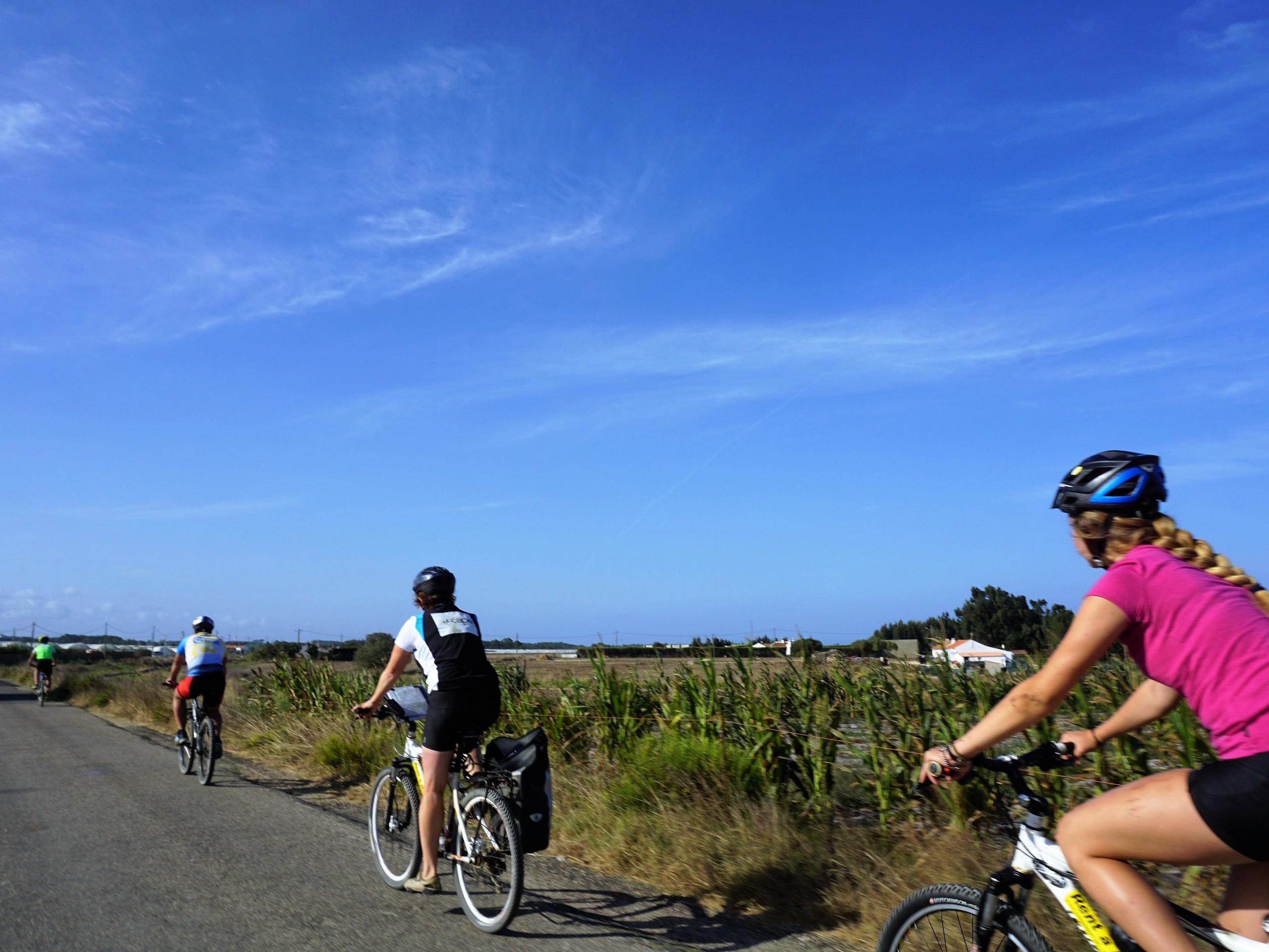 Cyclist biking through fields in Portugal