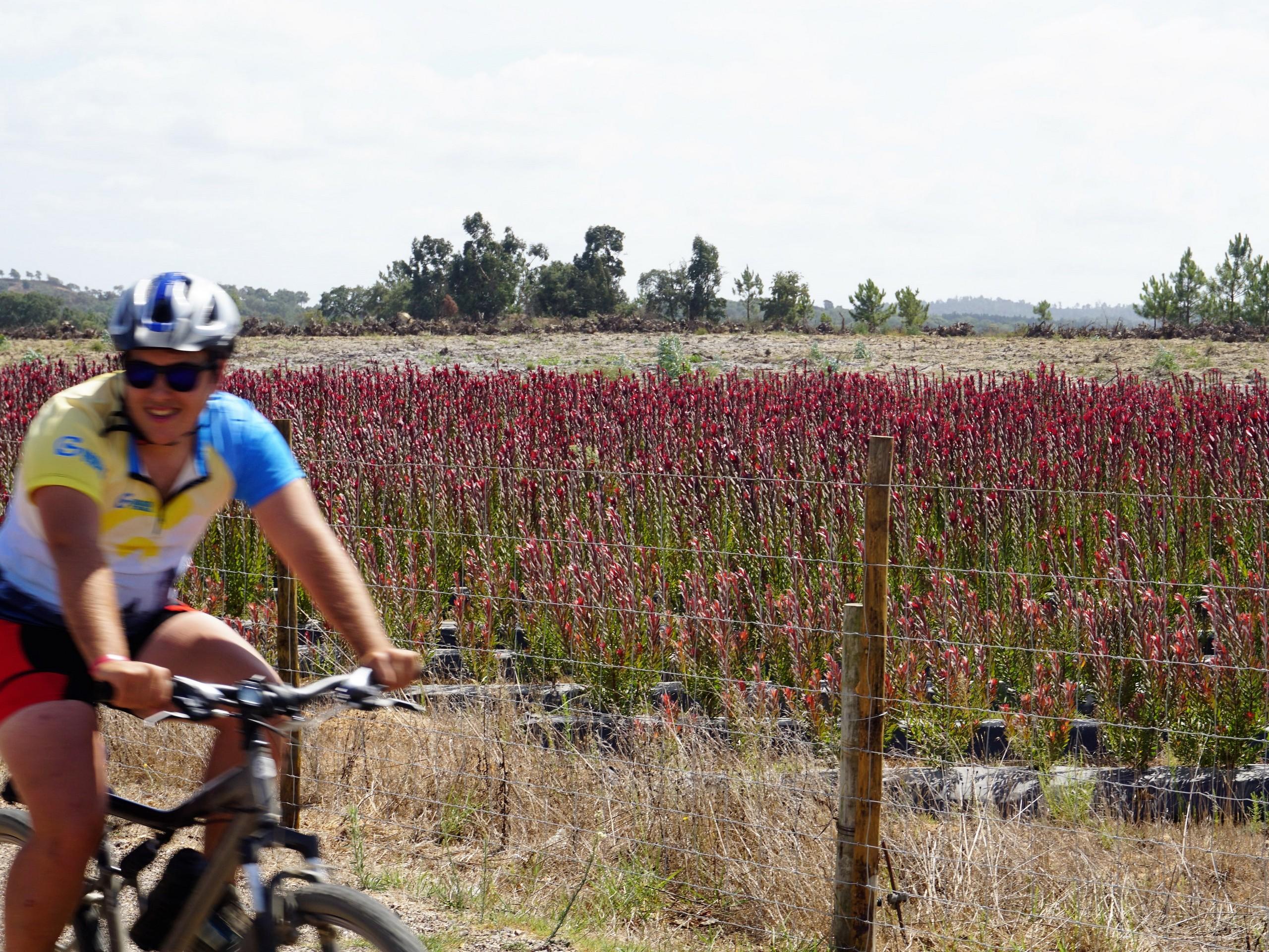Cycling in Zambujeira, Portugal