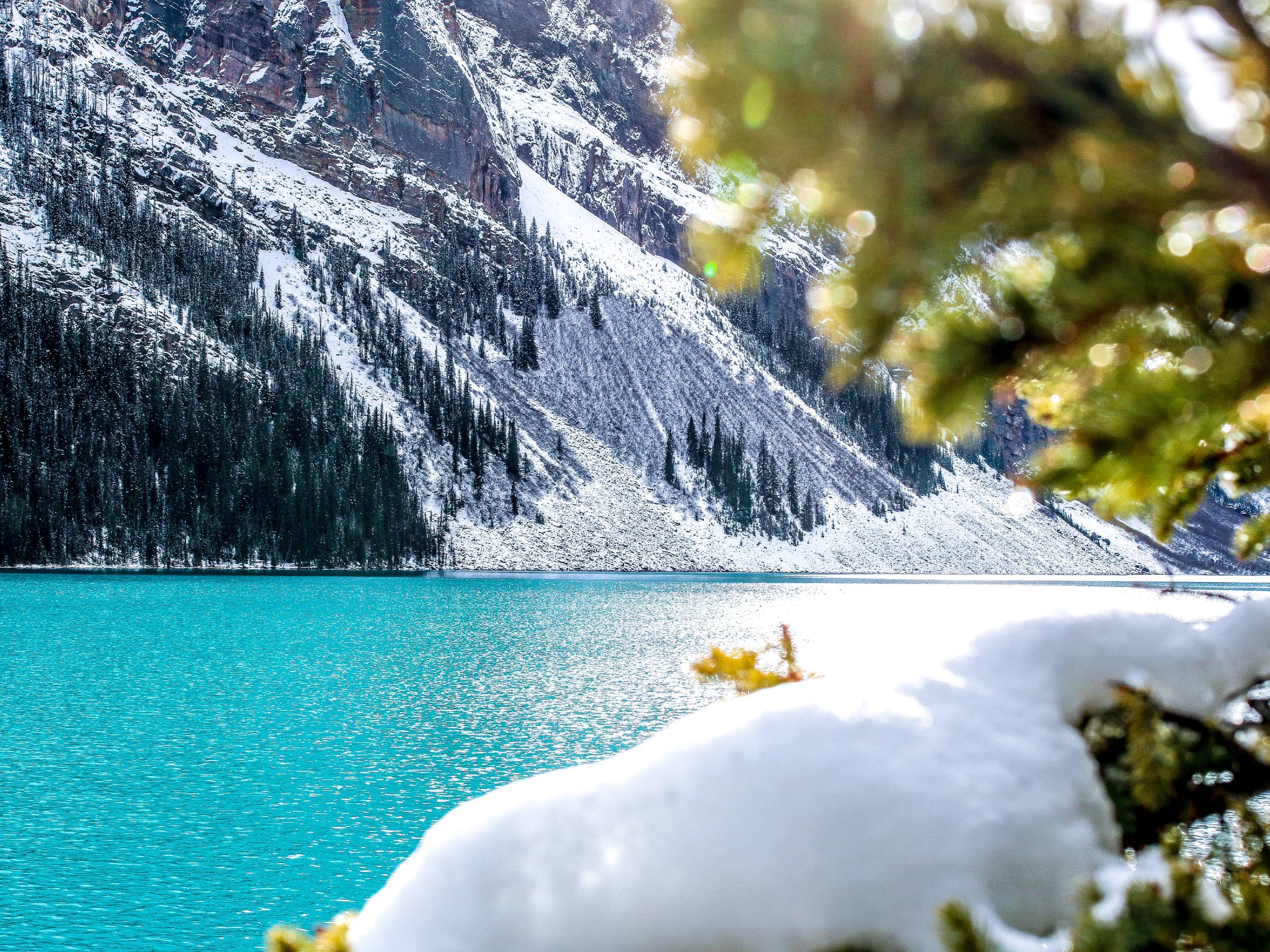 Turquoise lake in Banff National Park