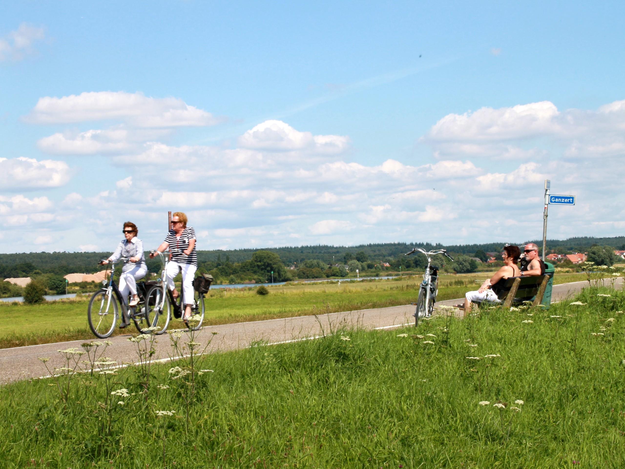 Biking path in Utrecht