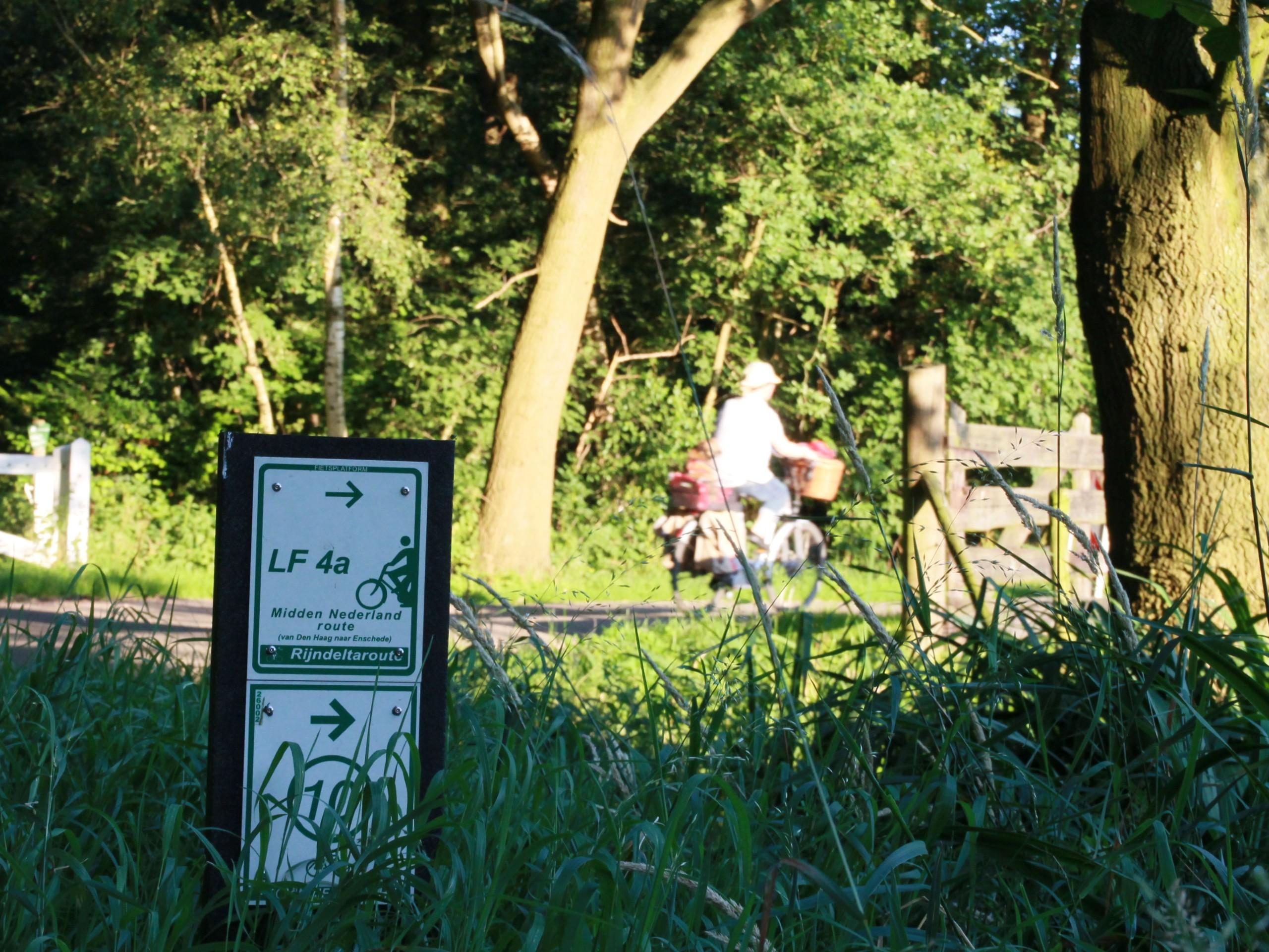Biking paths in Utrecht