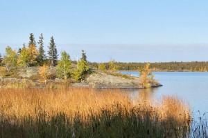 Northern Lights Wilderness Escape
