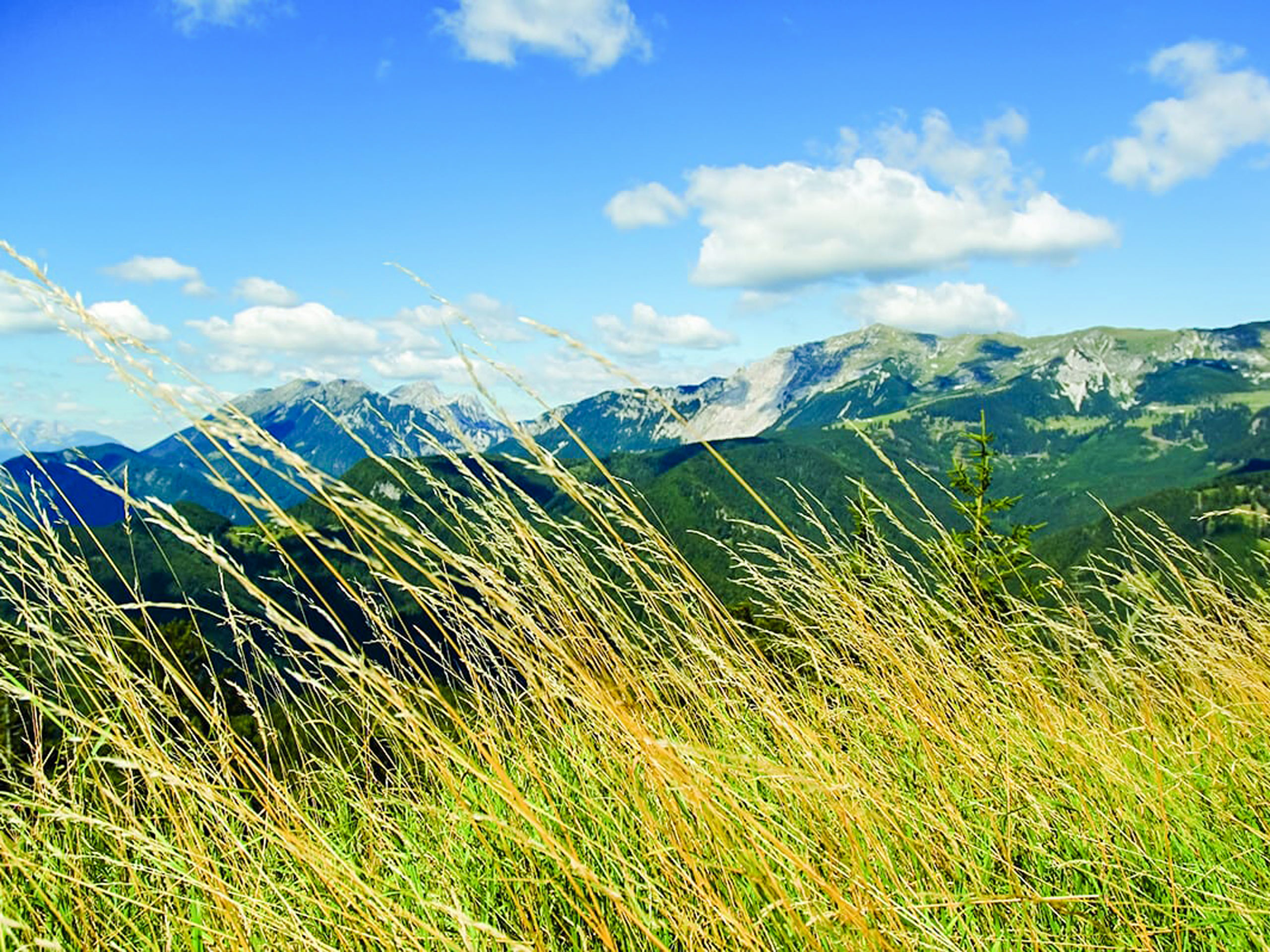 Beautiful view on the mountain range