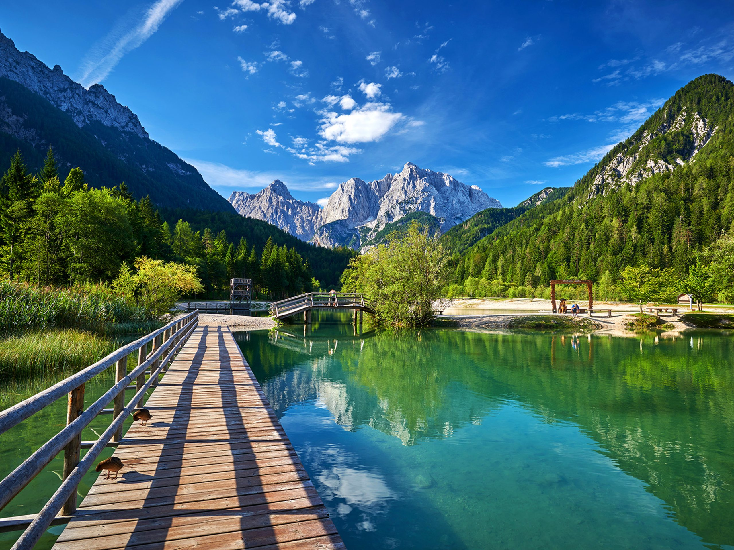 Stunning mountain views above the turquoise lake in Slovenia