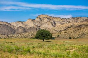 Vashlovani National Park Adventure Tour