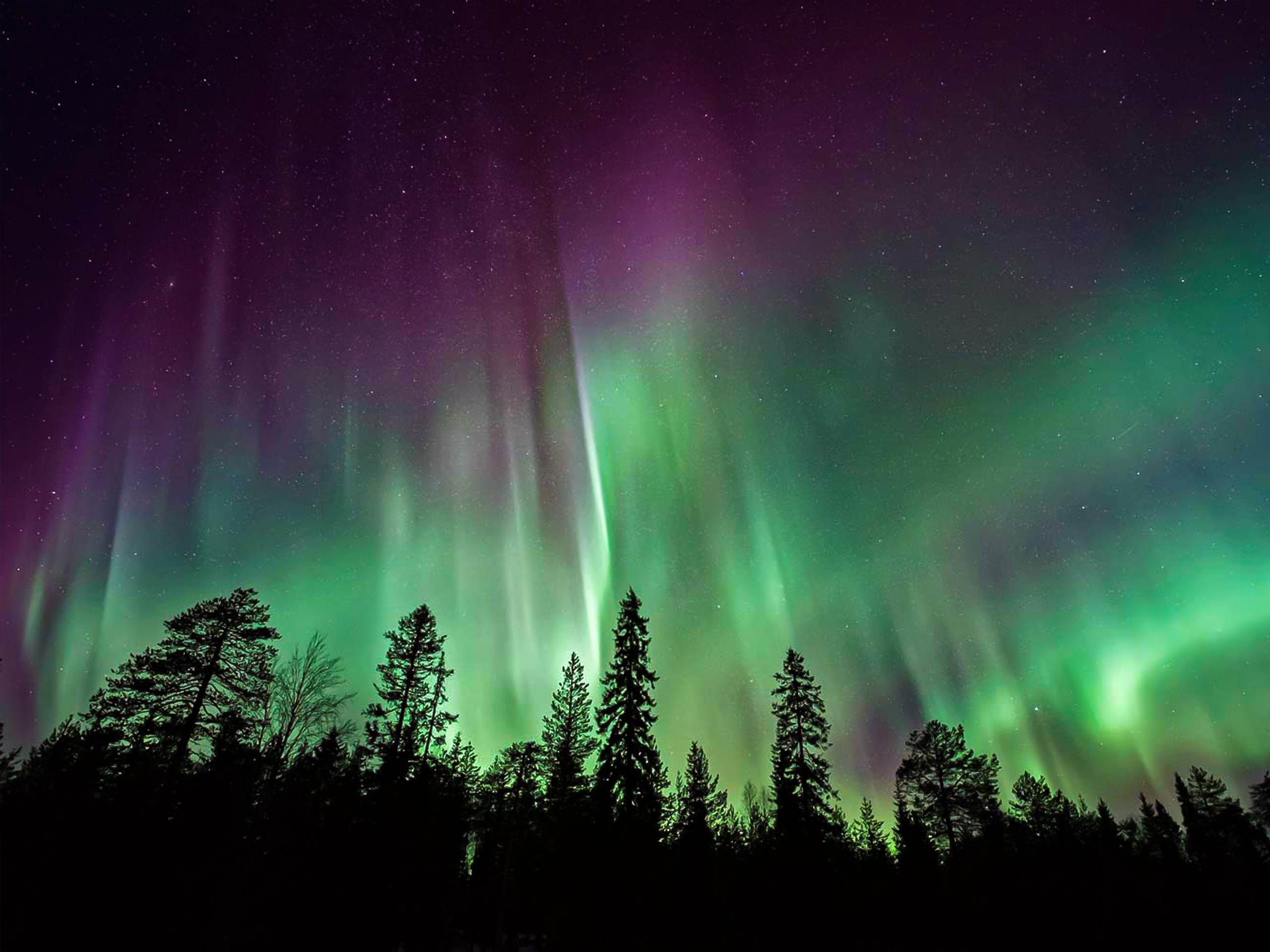 Amazing Northern Lights