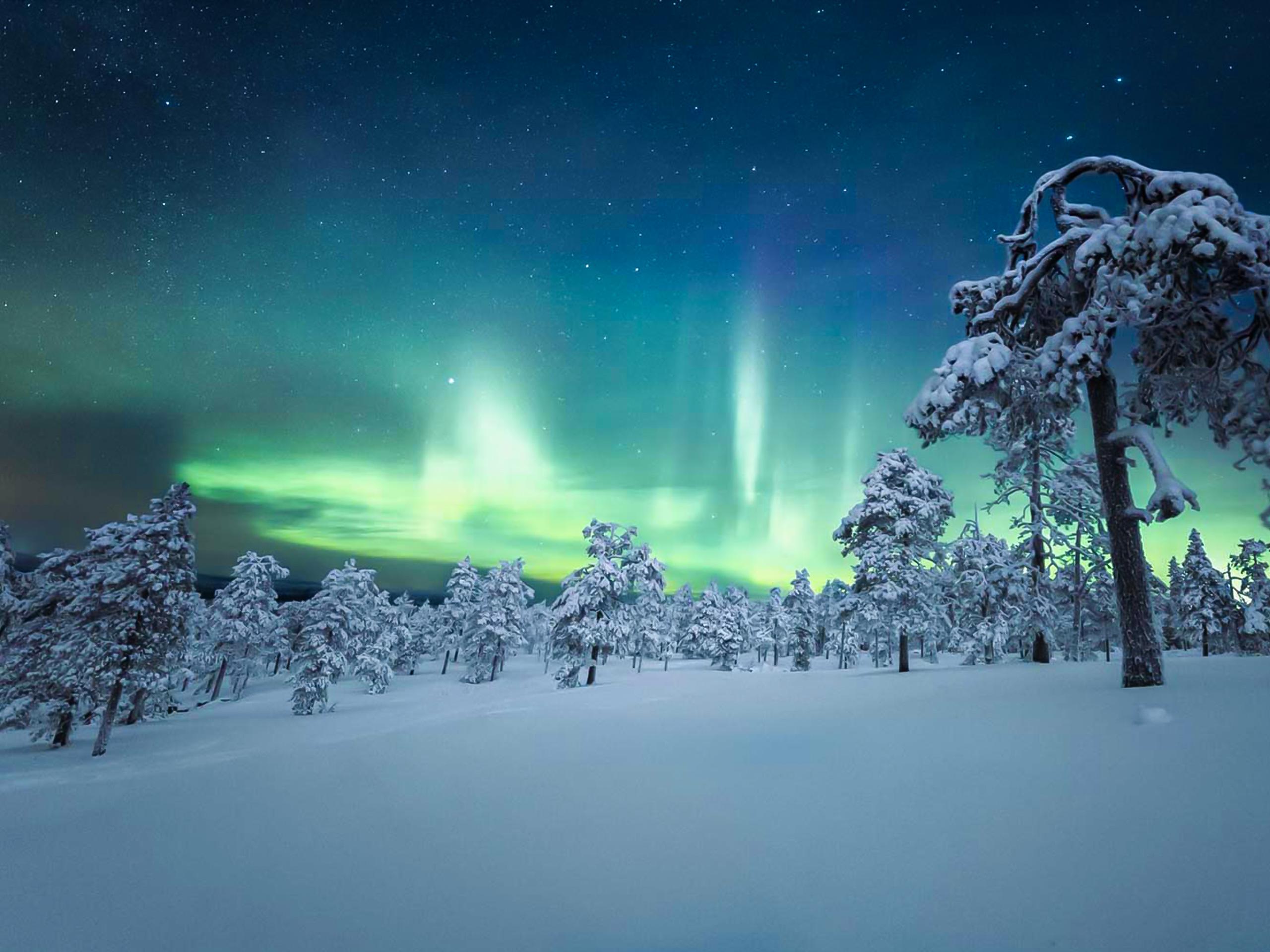 Aurora Borealis Lights Up the Night Sky