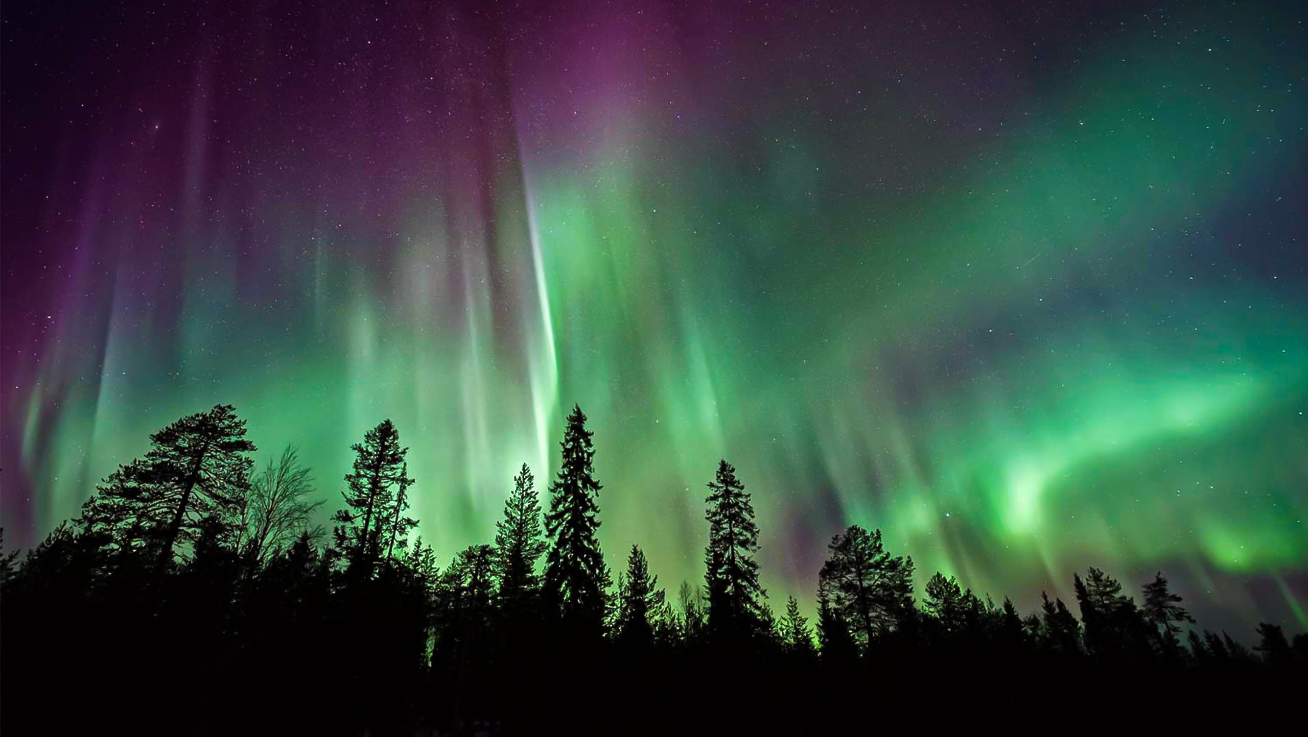 Yukon Ultimate Northern Lights Tour