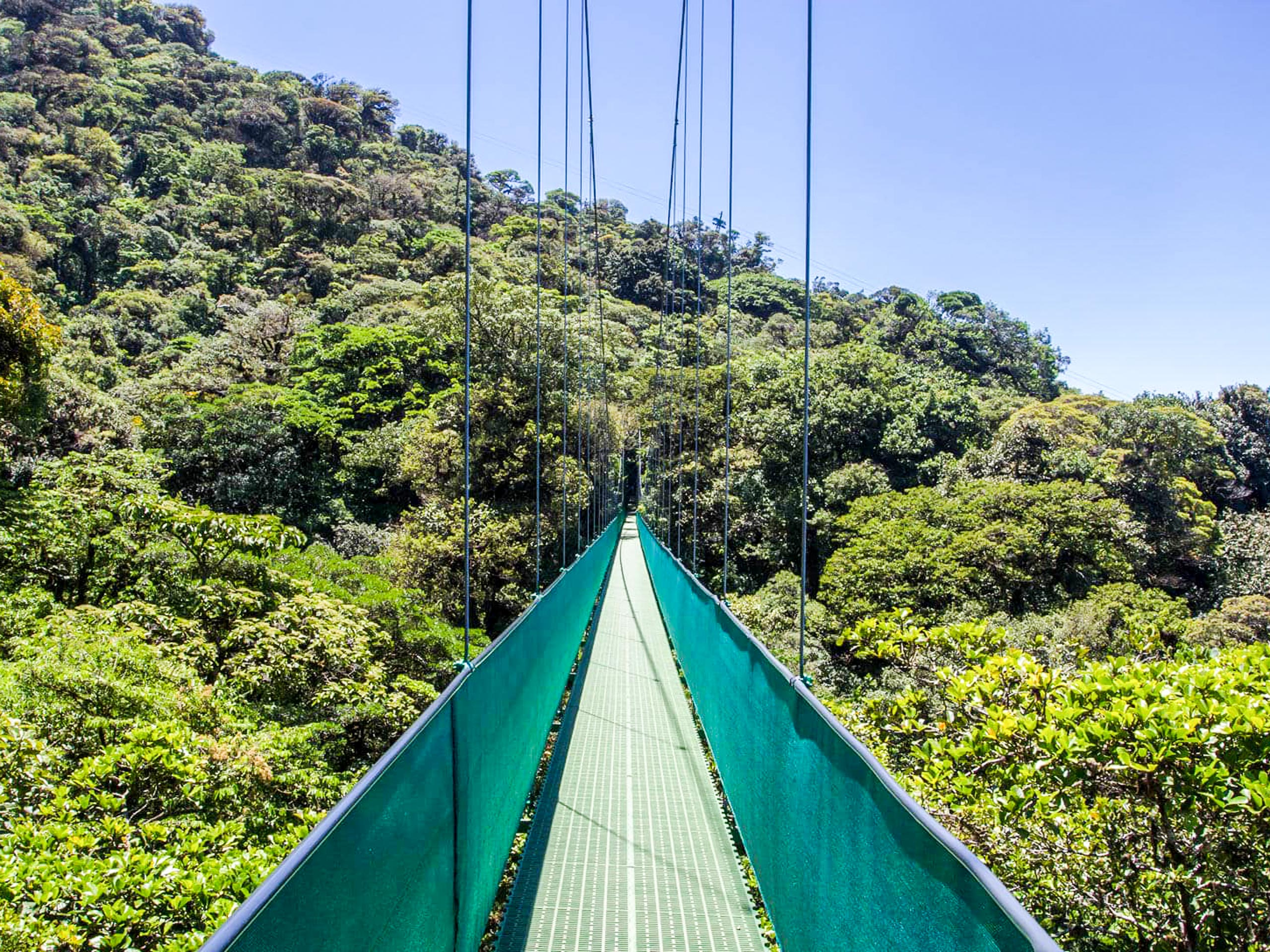 Hanging bridge for a sky walk