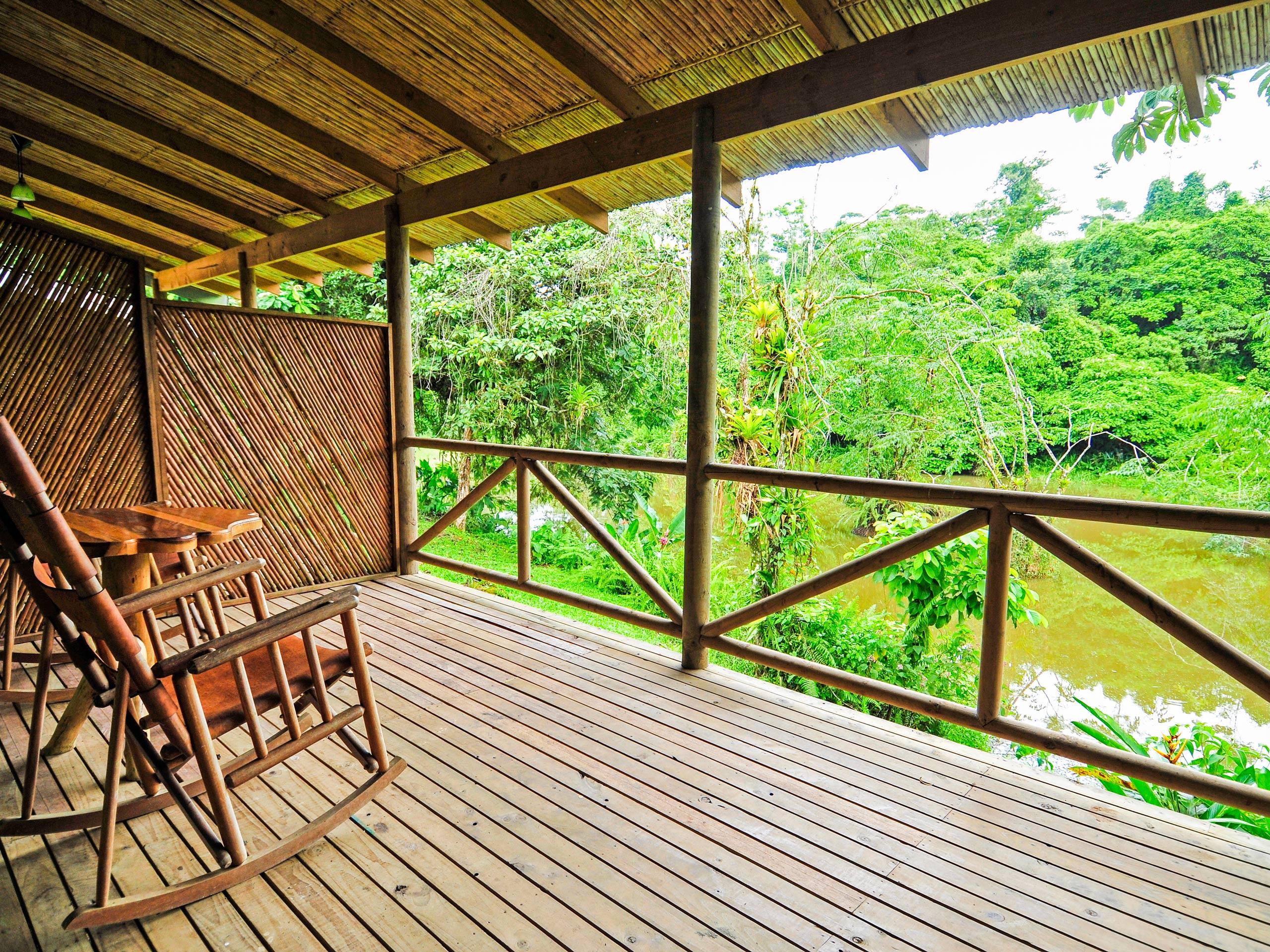 Rainforesf near the hotel