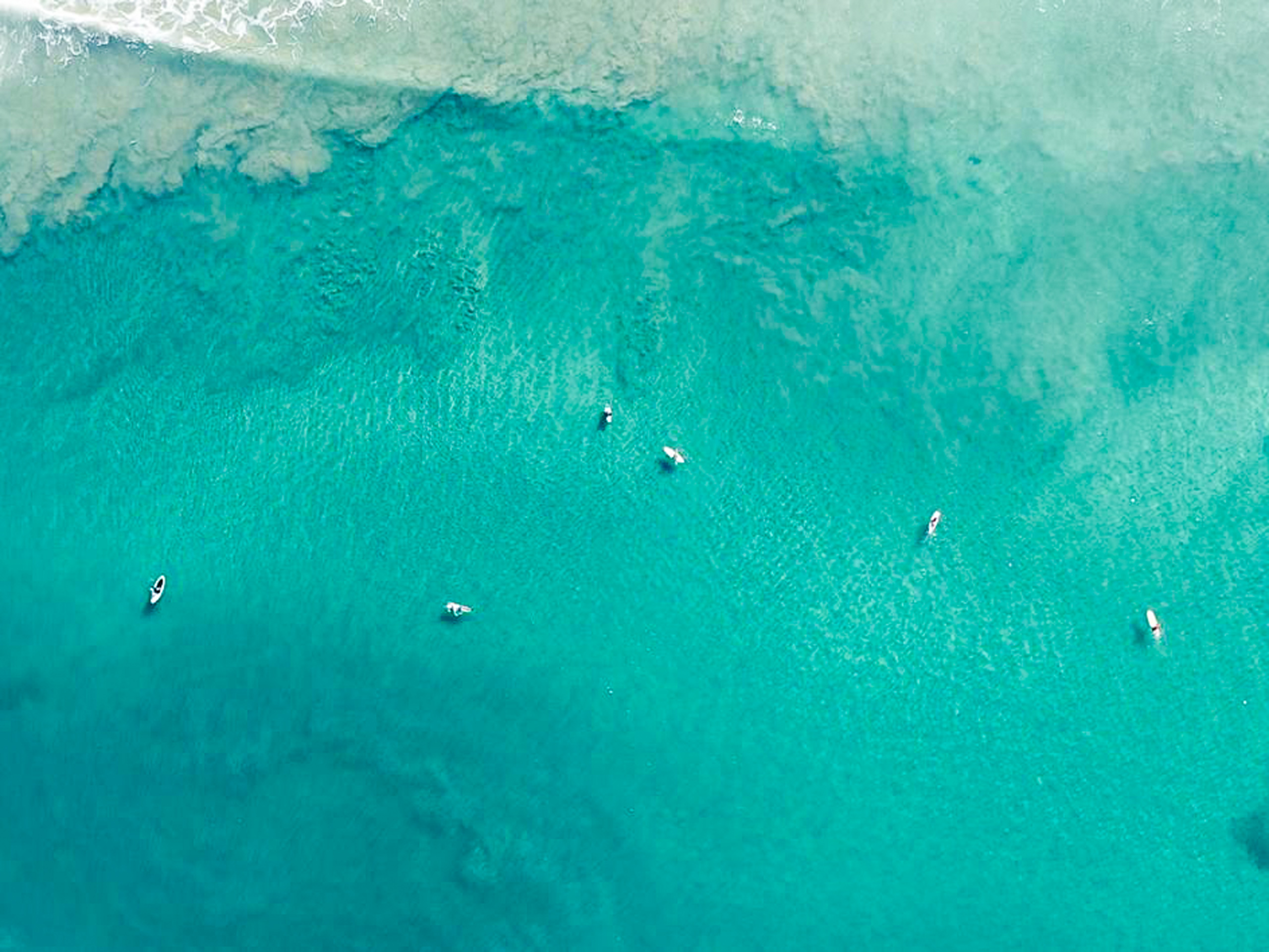 Surfers in the Pacific Ocean air view