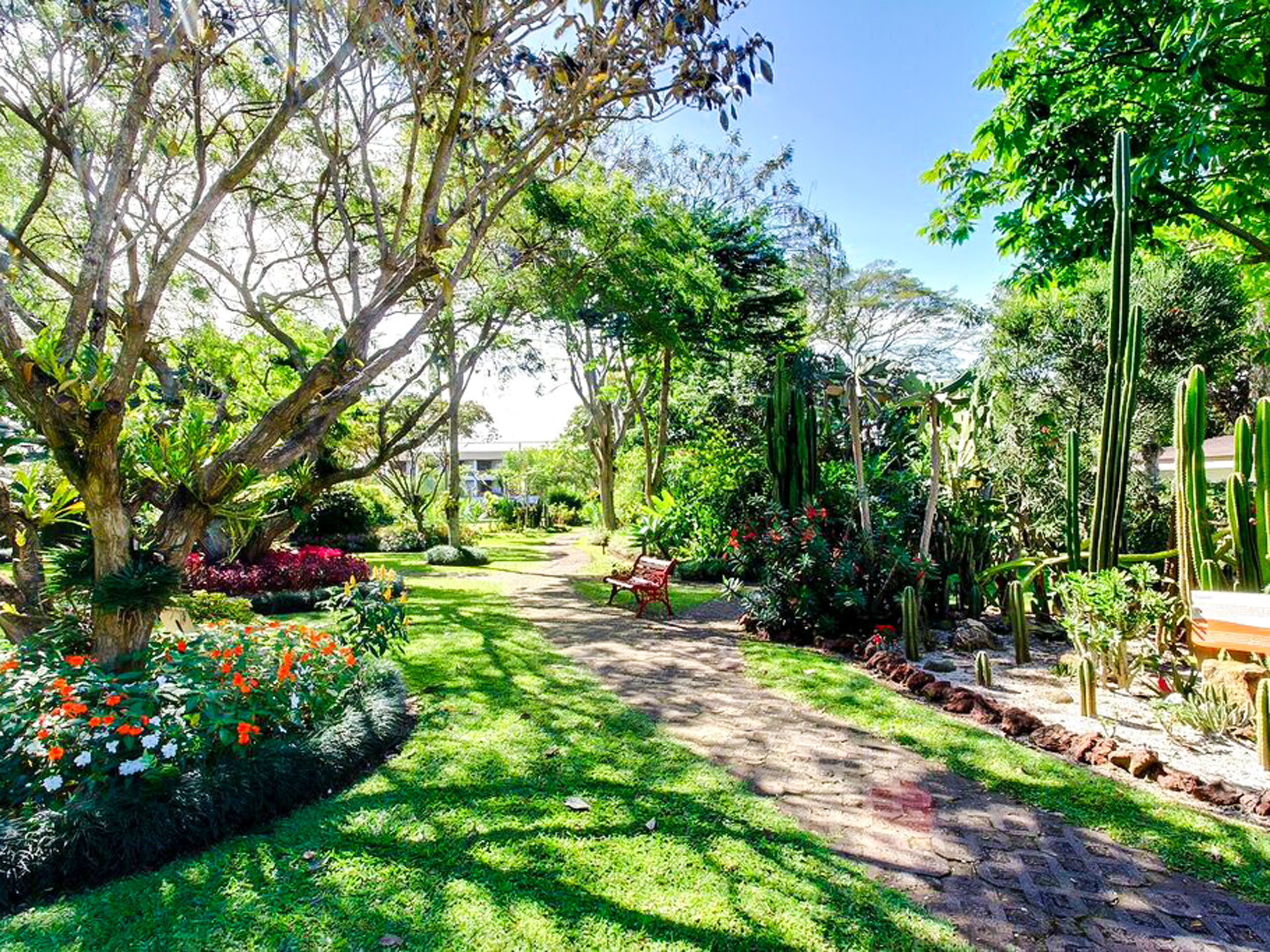 Amazing garden in Bougainvillea Hotel