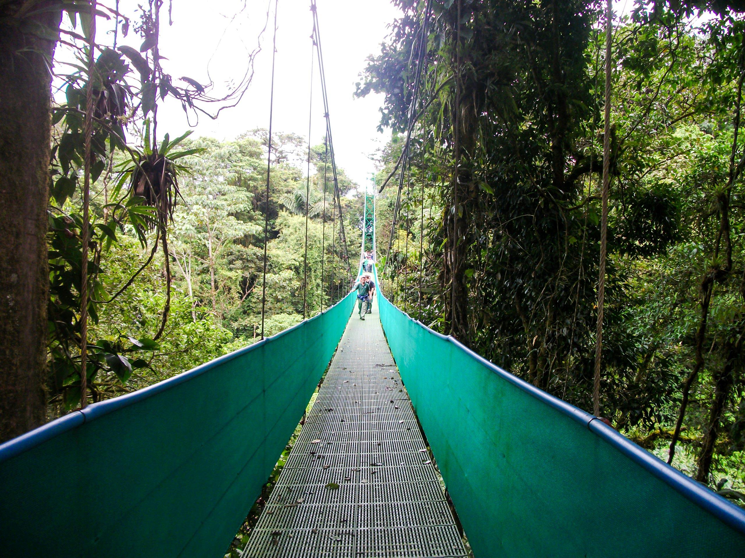 Sky walking bridge