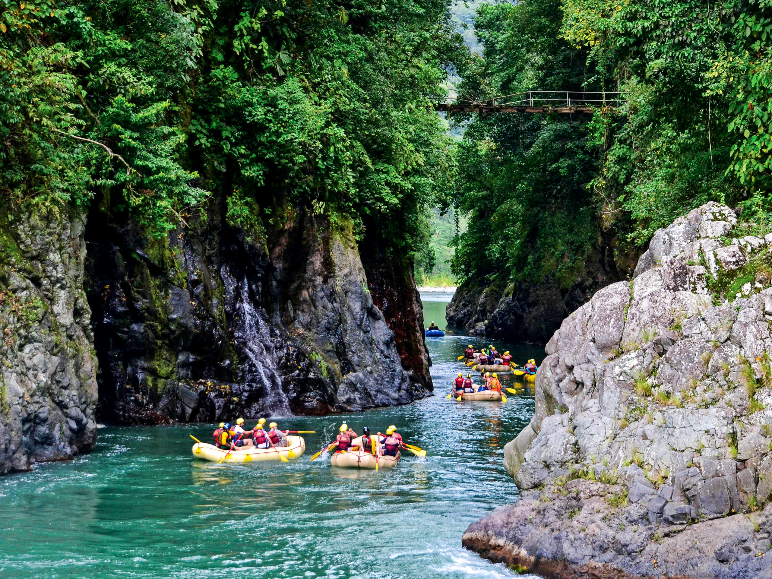 Tropical forest rafting on a rocky river