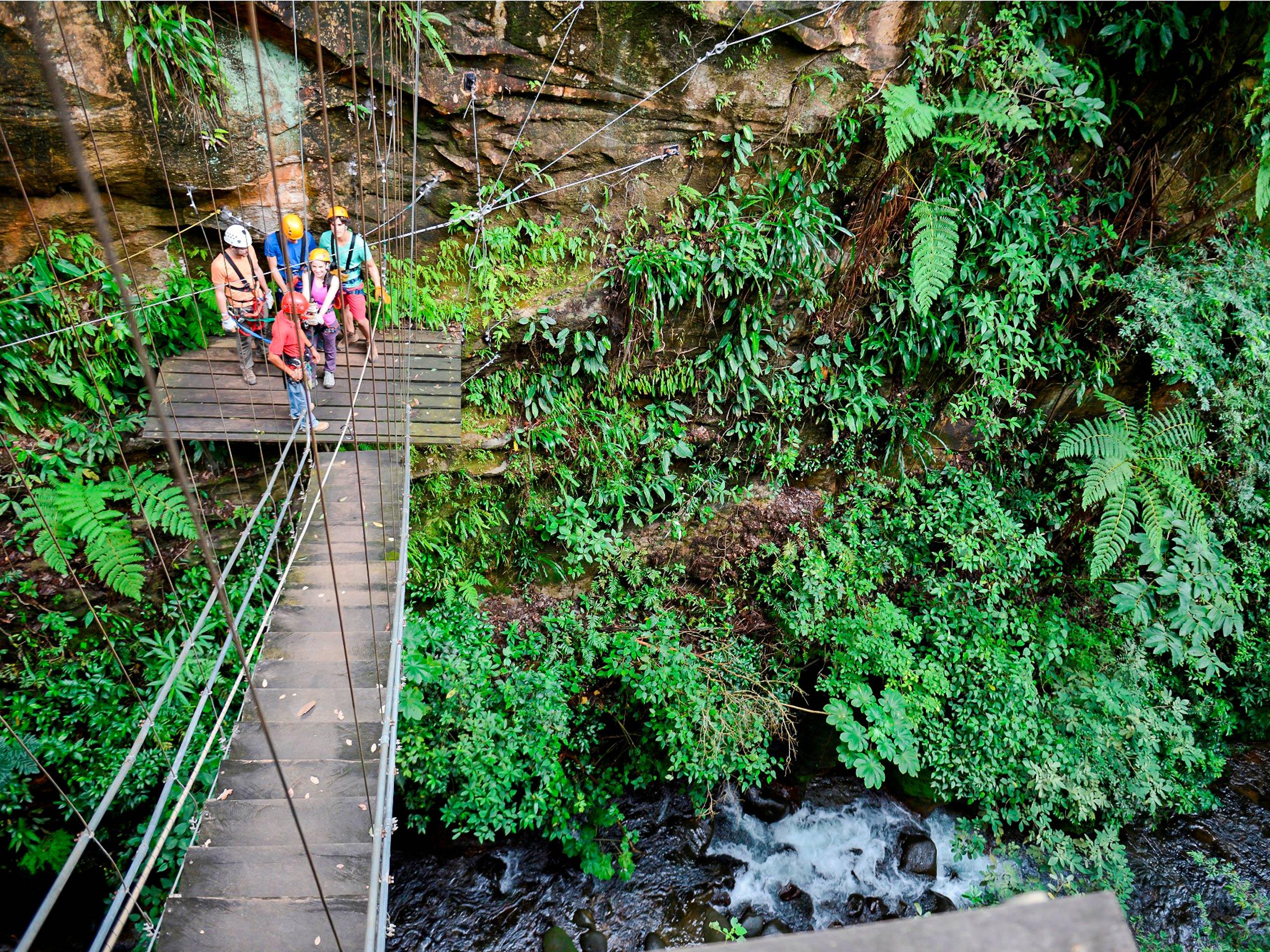 Bridge to the rock on the rainforest