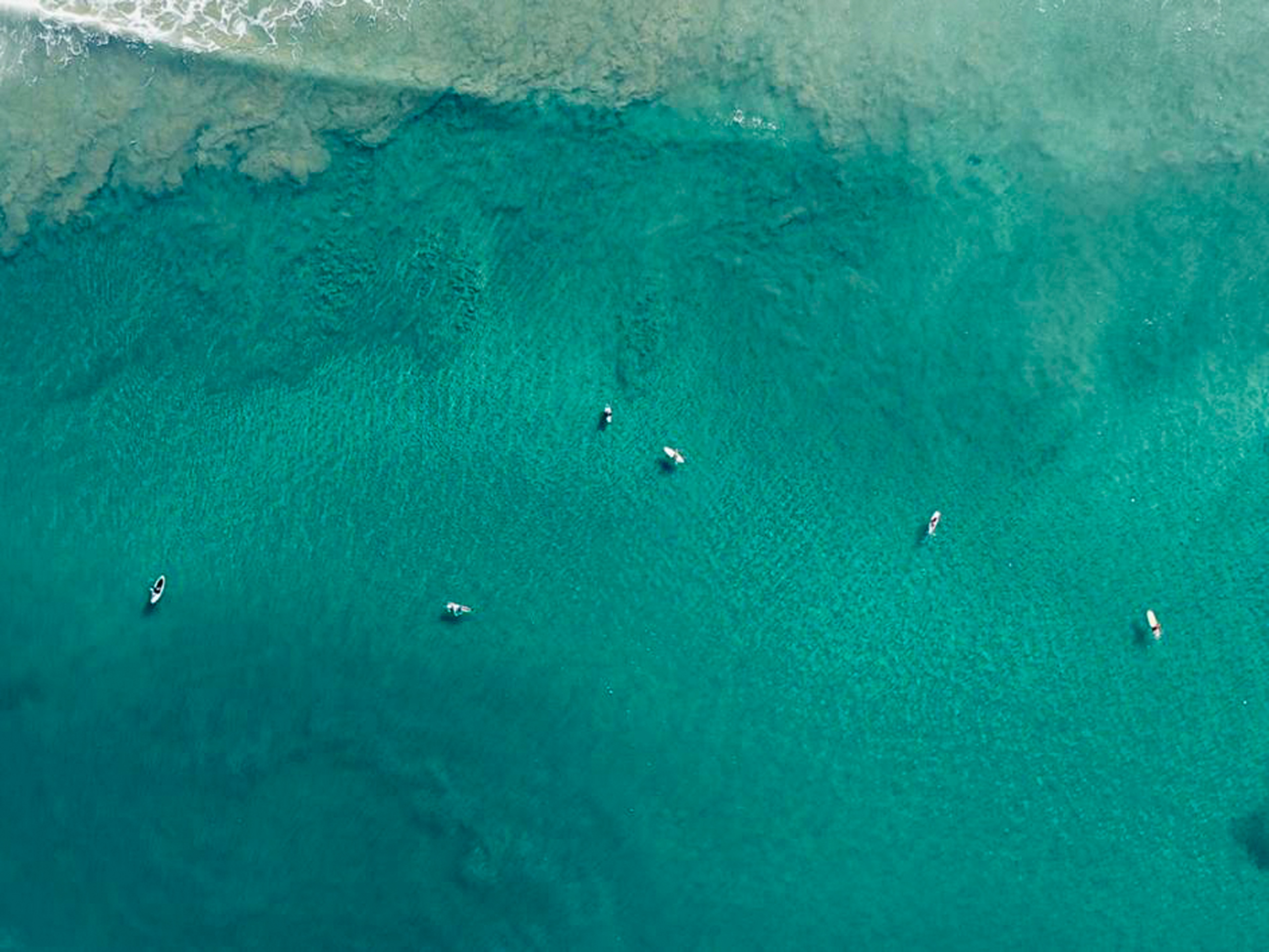 Surfers are waiting for the wave