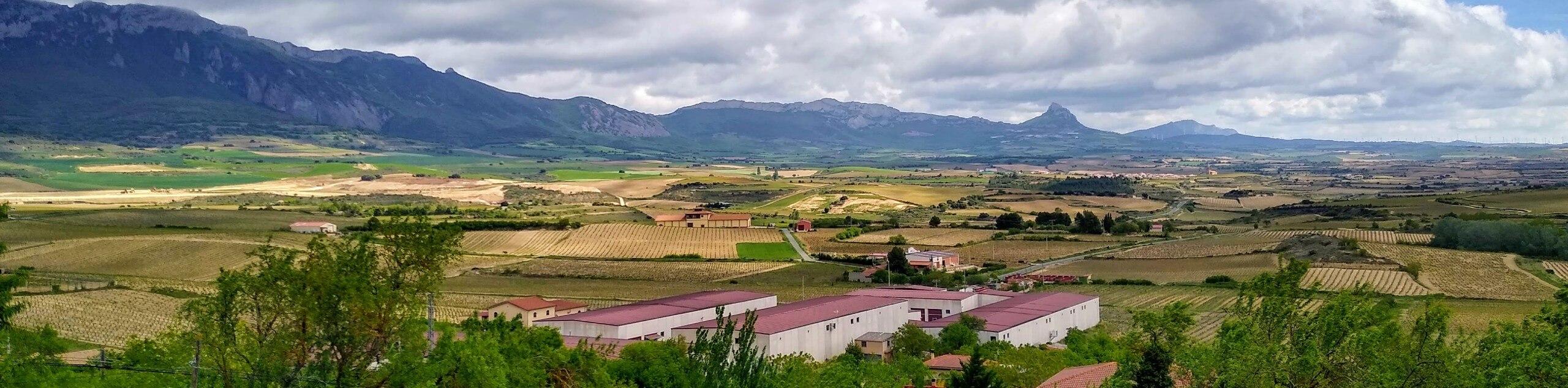 Wine Tour of La Rioja by Bike