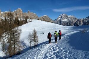 Dolomites Snowshoeing Adventure